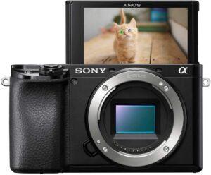 Sony Alpha a6100 Con il suo design leggero e compatto l'A6100 è ideale per scatti in viaggio e vlogging.
